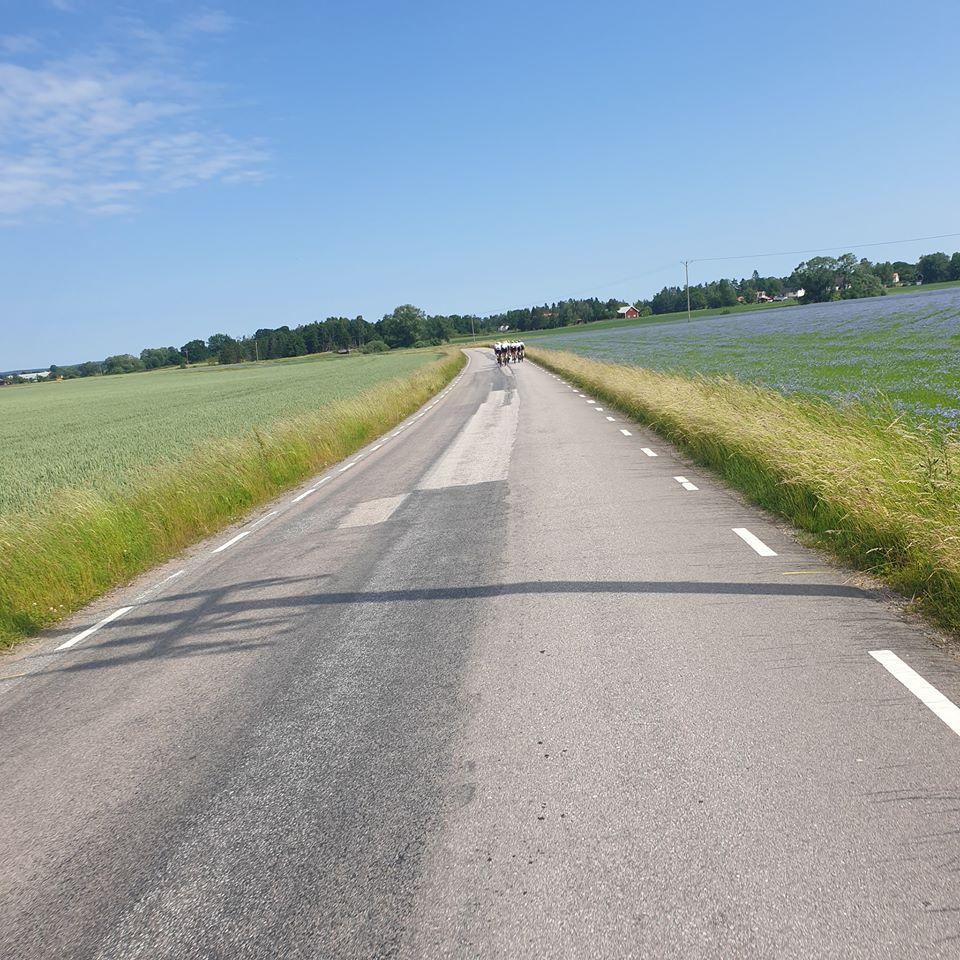 Ronde van Rystad 2019